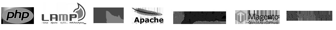 web sitesi tasarımı programlama dilleri